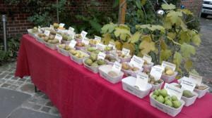 Am Samstag, den 22. Oktober 2016, Verkostung unserer Obstsorten und Sortenschau in der Zeit von 09.00 bis 13.00 Uhr