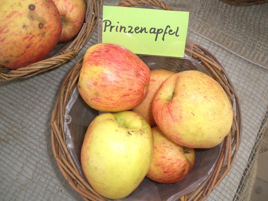 JP-Prinzenapfel.-JPJPG-Kopie-1024x768.jpg