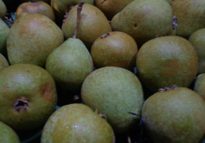 Apfel-u.-Birnensorten-2013-003-400x280.jpg