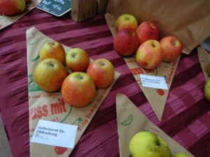 Früchte-in-den-Spitztüten-No.-3-300x225.jpg