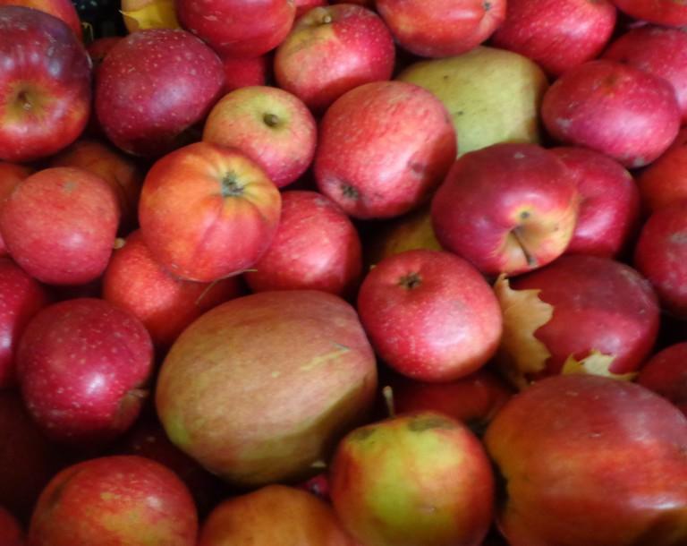 Kiste-mit-roten-Äpfeln-gemischt-768x610.jpg