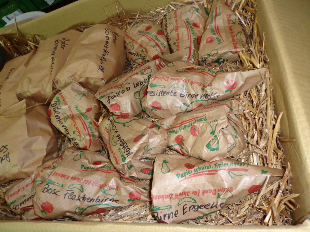 Paket-mit-Kilotüten-Apfel-und-Birne-gem.-10-Kilo-Paket-10-16-1024x768.jpg